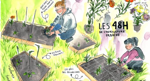 Lg illustration julie jardin de lug