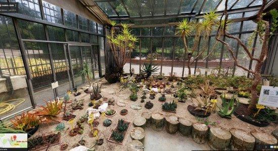 Visite de la serre du Jardin des Plantes | ECHOSCIENCES - Grenoble