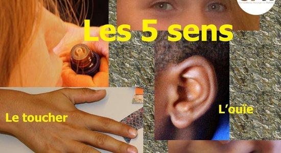 Eveil des sens - Atelier jeune public (CPN) - Echosciences Grenoble